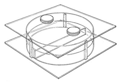 Illustration of a choice chamber